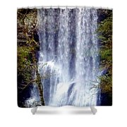 Waterfall South Shower Curtain