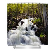 Waterfall Through The Aspens Shower Curtain