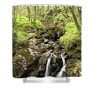 Waterfall Through Woodland Shower Curtain