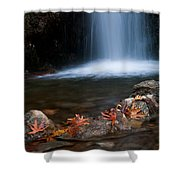 Waterfall And Leaves In Autumn Shower Curtain