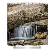 Waterfall Under Fallen Log Shower Curtain
