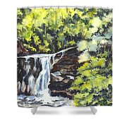 In Central Park N Y C Shower Curtain