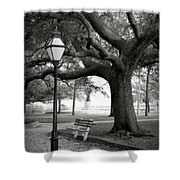 Waterfront Park Shower Curtain