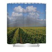 Watering The Corn Shower Curtain