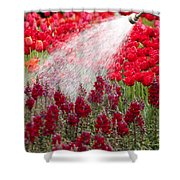 Watering The Garden Shower Curtain