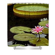 Waterlilies And Platters Vertical Romance Shower Curtain