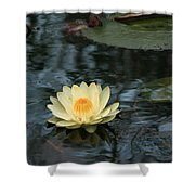 Waterlilly 1 Shower Curtain