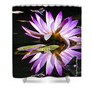 Waterlily And Dragonfly Shower Curtain