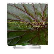 Waterlily Leaf Macro Shower Curtain