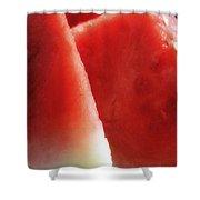 Watermelon Heaven Shower Curtain by Joseph Hedaya