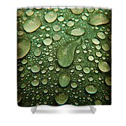 Raindrops On Watermelon Rind Shower Curtain