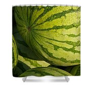 Watermelons Shower Curtain