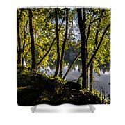 Waters Edge Shower Curtain by Bob Orsillo