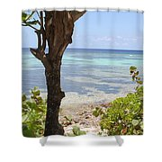 Waters Edge Shower Curtain