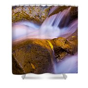 Waters Of Zion Shower Curtain