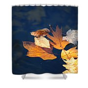 Watery Grave Shower Curtain