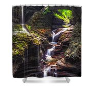 Watkins Glen Rainbow Falls Shower Curtain by Mark Papke