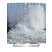 Wave At Salt Point Shower Curtain