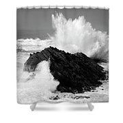Wave At Shore Acres Bw Shower Curtain