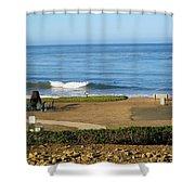 Wave Upon San Simeon Shore Shower Curtain