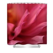 Wavelets Shower Curtain