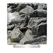Waves And Rocks 4 Shower Curtain