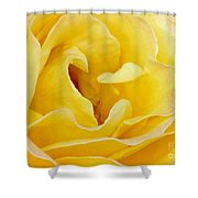Waves Of Yellow Shower Curtain by Sabrina L Ryan