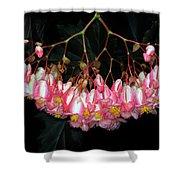 Wax Begonia Shower Curtain