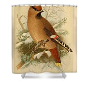 Waxwing Shower Curtain