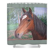 Wayne's Horse Shower Curtain