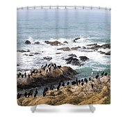 We All Can Get Along Shower Curtain