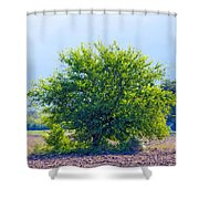 We Are Light Shower Curtain