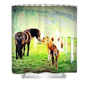 We Live Right Here Inside This Fence And Under This Big Mountain  Shower Curtain