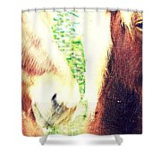 We Look You In The Eye And Wonder Who You Are  Shower Curtain
