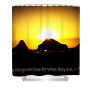 We Love The Things We Love Shower Curtain