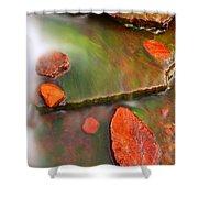 Weano Gorge - Karijini Np 2am-111702 Shower Curtain