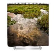 Weather Reflected Shower Curtain
