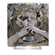 Weathered And Wise Shower Curtain