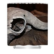 Weathered Bison Shower Curtain