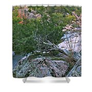 Weathered Cedar Overlooking The Castor River Shower Curtain