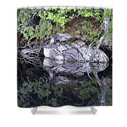 Weathered Reflection Shower Curtain