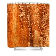 Weathered Wall 04 Shower Curtain