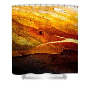 Weathered Wood Landscape Shower Curtain