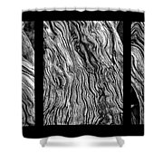 Weathered Wood Triptych Bw Shower Curtain