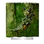 Web N Things Abstract Shower Curtain