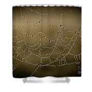 Web Of Pearls Shower Curtain