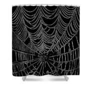 Web We Weave Shower Curtain