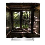 Web Window Shower Curtain