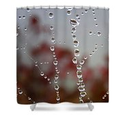 Web Works Shower Curtain