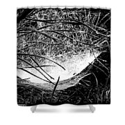 web1BW Shower Curtain